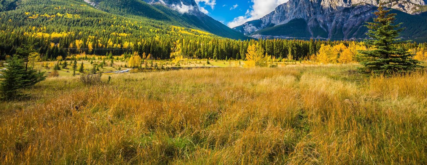Canmore Car Hire
