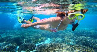 Great Barrier Reef Luxury Snorkel and Dive Cruise from Cairns