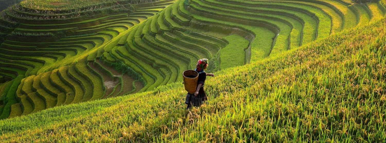 Sa Pá, Vietnam