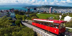 Car Hire in Wellington