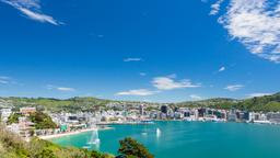 Wellington car rentals