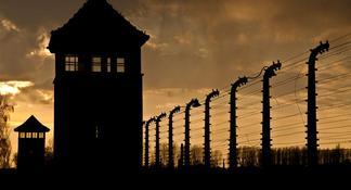 Demi-journée au musée d'Auschwitz-Birkenau, au départ de Cracovie