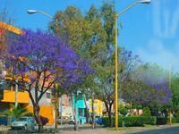 Hôtels à Aguascalientes