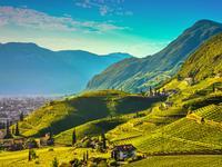 Bolzano/Bozen hotels