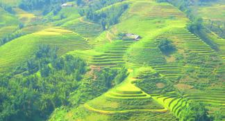 Muong Hoa Valley 2-Day Group Trek with Homestay