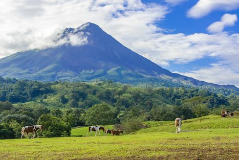 Deals for Hotels in Alajuela