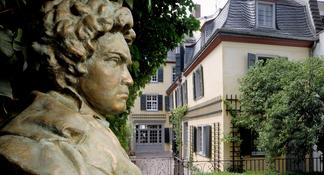 Welcome to Bonn: Private Tour with a Local