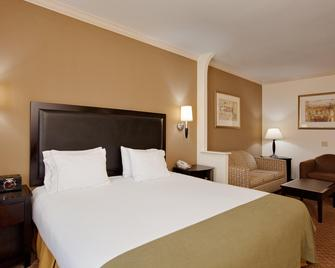 Holiday Inn Express Hotel & Suites La Porte - La Porte - Slaapkamer
