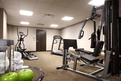 Sterling Inn & Spa - An Ontario's Finest Inn - Niagara Falls - Gym