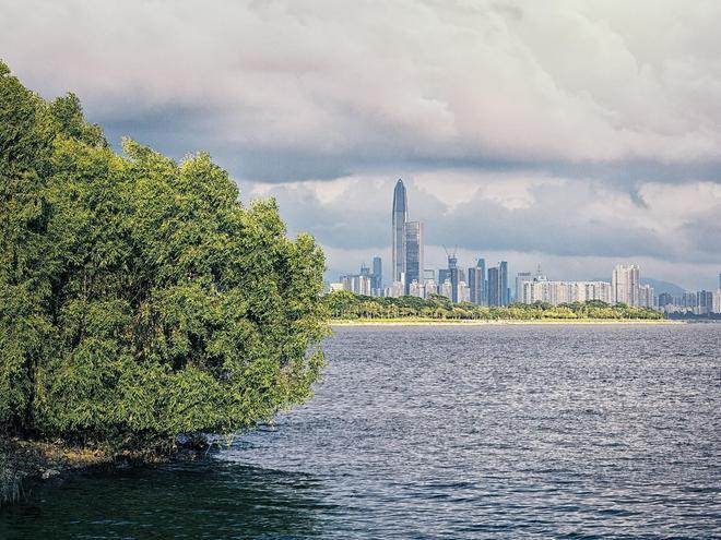 Shenzhen Zhulin Hotel - Shenzhen - Outdoors view
