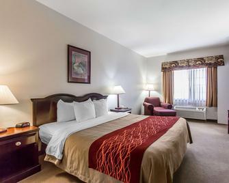Quality Inn & Suites - Guymon - Bedroom
