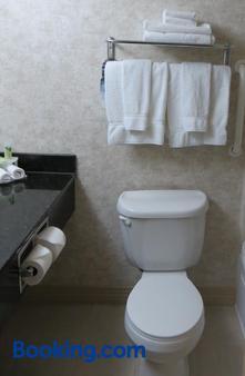 梅肯西智選假日套房酒店 - 馬孔 - 梅肯 - 浴室