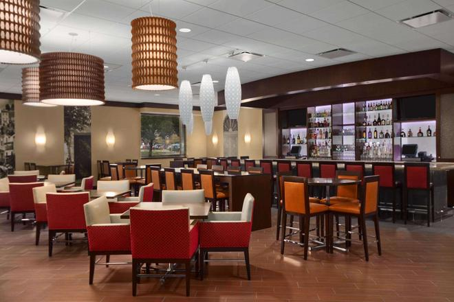 Embassy Suites by Hilton Chicago O'Hare Rosemont - Rosemont - Bar