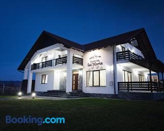 Pensiunea Conacul lui Horia - Bistrița - Building