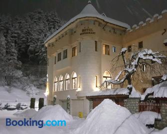 The Castle Hotel - Samokov - Building