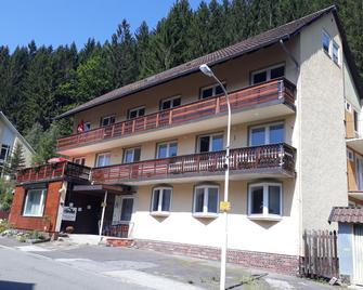 Haus Mena - Wildemann - Будівля