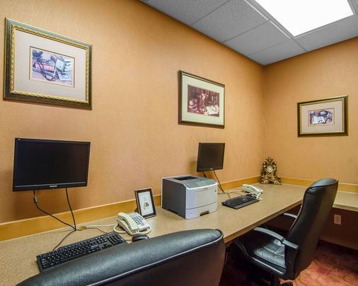 Quality Inn & Suites - Grande Prairie - Khu vực làm việc