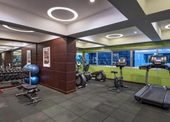 Holiday Inn Guatemala - Guatemala City - Gym