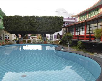 Hotel Internacional Cuautla - Куаутла (Морелос) - Басейн