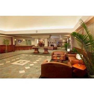 國王道小屋新銳酒店 - 埃德蒙頓 - 大廳