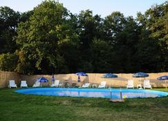Hotel Anthimos - Oradea - Pool