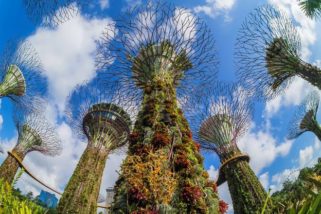 Grand Hyatt Singapore - Singapore - Nähtävyydet