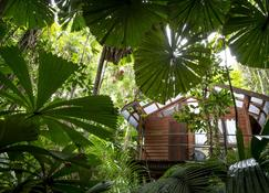 Daintree Wilderness Lodge - Cape Tribulation - Outdoors view