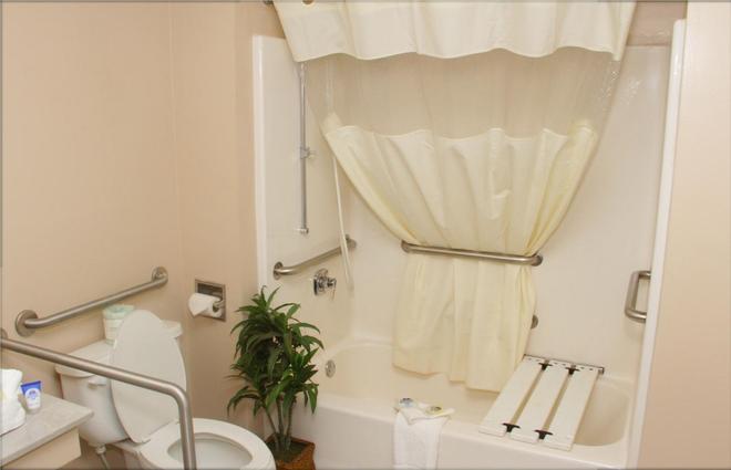 Americas Best Value Inn Rome - Rome - Bathroom