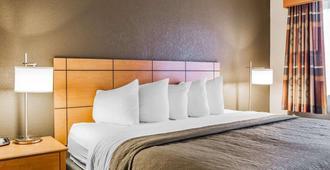 Quality Inn & Suites Des Moines Airport - Des Moines - Bedroom