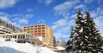Panorama Hotel - Davos - Building