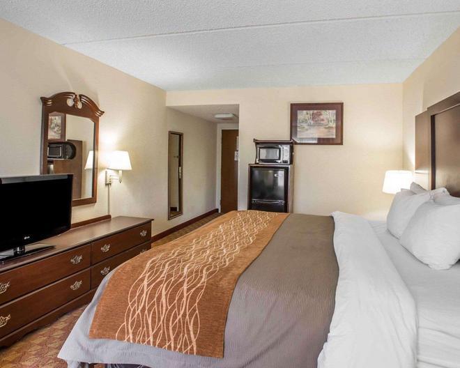 Comfort Inn and Suites at I-85 - Spartanburg - Bedroom
