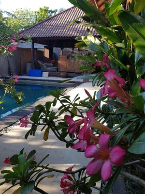 Gili Exotic Villas - Pemenang - Pool