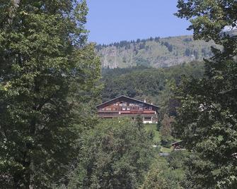 Hôtel Edelweiss - Samoëns - Outdoor view