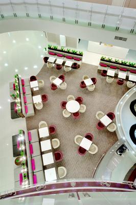 歐米茄索契鬱金香酒店 - 阿德勒 - 索契 - 大廳