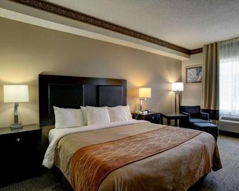 Comfort Inn & Suites - Seguin - Bedroom