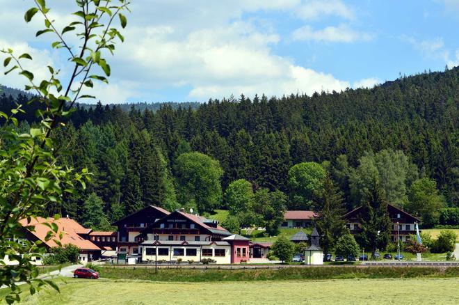 Wellness- Und Vitalhotel Böhmhof - Bodenmais - Vista del exterior