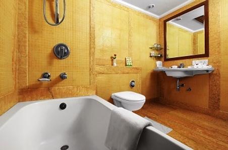 齋浦爾里吉斯公園酒店 - 齋浦爾 - 齋浦爾 - 浴室