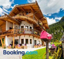 Chalet Vites Mountain Hotel