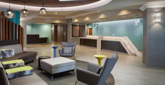 Springhill Suites Orlando Lake Buena Vista Marriott Village - Orlando - Recepción