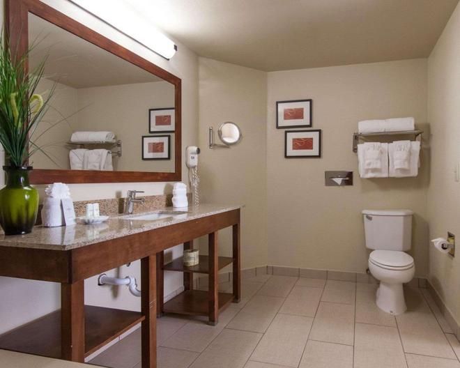 Comfort Suites Central/I-44 - Tulsa - Baño