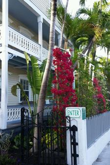Westwinds Inn - Key West - Outdoor view