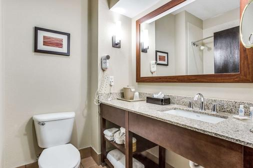Comfort Inn & Suites Love Field-Dallas Market Center - Dallas - Bathroom