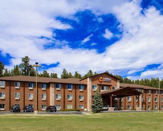 Comfort Inn and Suites Custer - Custer - Building