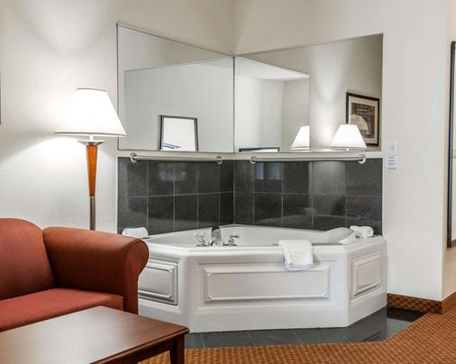 Comfort Suites near Indianapolis Airport - Indianapolis - Bathroom