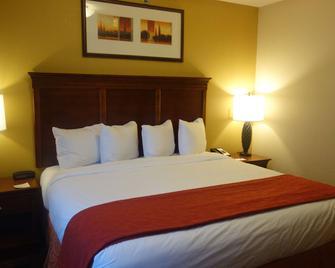 Country Inn & Suites by Radisson, Helen, GA - Helen - Bedroom