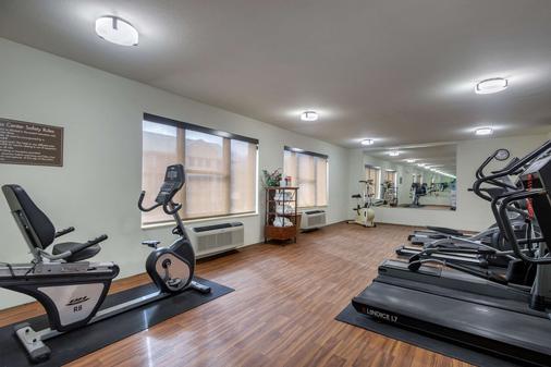 Comfort Inn & Suites Springfield I-44 - Springfield - Gym