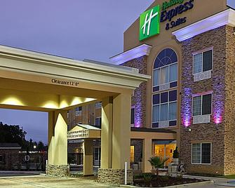 Holiday Inn Express & Suites Carthage - Carthage - Building