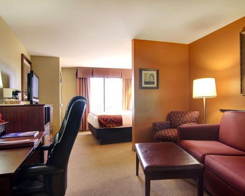 Comfort Suites El Paso West - El Paso - Bedroom