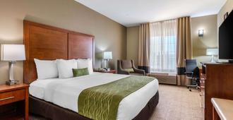 Comfort Inn & Suites Sacramento - University Area - Sacramento - Bedroom
