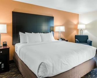 Comfort Inn & Suites - Ashland - Bedroom